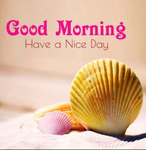 Animals Greeting New good morning Images - Animals Greeting New good morning Images