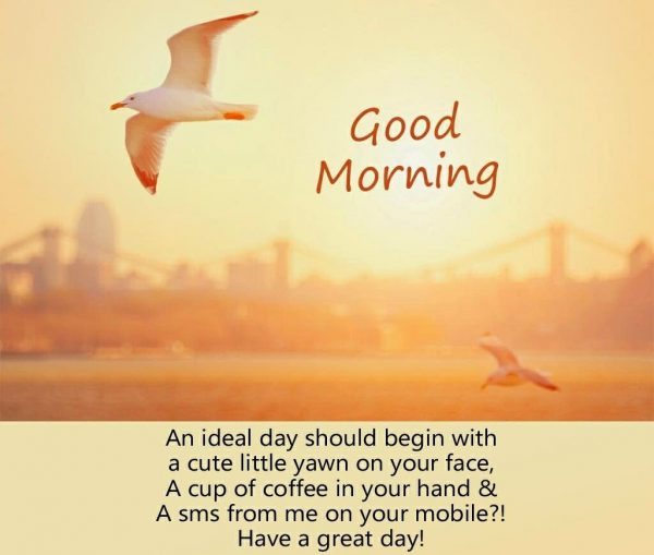 Birds good morning image Greetings Images - Birds good morning image Greetings Images