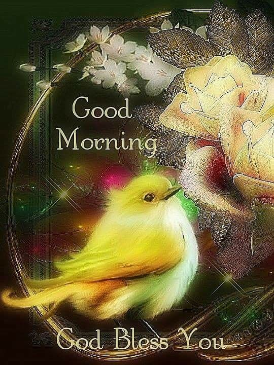 Birds good morning today image Greetings Images - Birds good morning today image Greetings Images