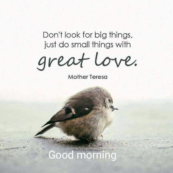 Birds sweet morning image Greetings Images - Birds sweet morning image Greetings Images