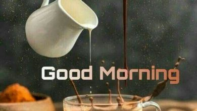 Coffee and Breakfast Greeting Best good morning Images 390x220 - Coffee and Breakfast Greeting Best good morning Images
