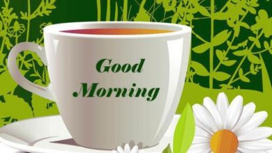 Coffee and Breakfast Greeting Happy morning Images 390x220 - Coffee and Breakfast Greeting Happy morning Images