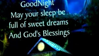 Cute gud night quotes image 390x220 - Cute gud night quotes image