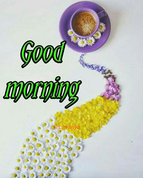 Flower great day morning image Greetings Images - Flower great day morning image Greetings Images