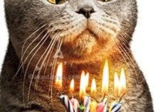 Funny birthday wishes Image 319x220 - Funny birthday wishes Image