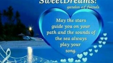 Gn sweet sms image 390x220 - Gn sweet sms image