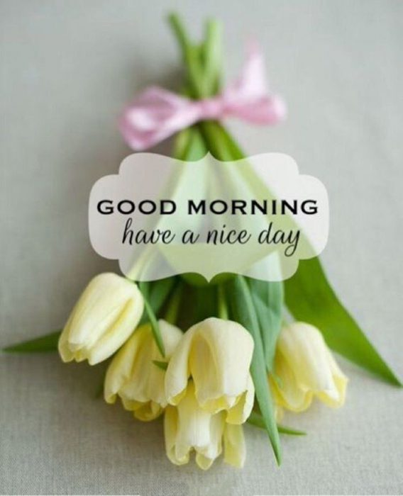Good morning Images - Good morning Images