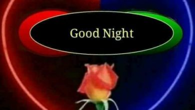 Good night friends pic image 390x220 - Good night friends pic image