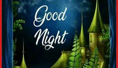 Good night stills image 380x220 - Good night stills image