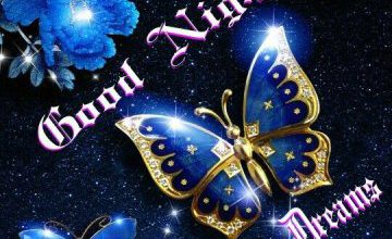 Good night wishes for lover image 360x220 - Good night wishes for lover image