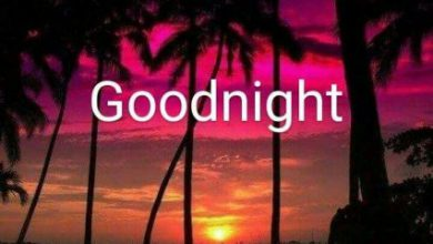 Good night wishes quotes lover image 390x220 - Good night wishes quotes lover image