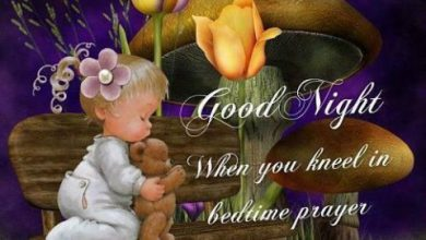 Good nite in image 390x220 - Good nite in image