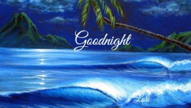 Gud night message image 390x220 - Gud night message image