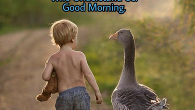 Happy morning boys and girls image 390x220 - Happy morning boys and girls image
