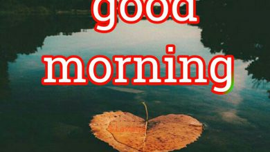 Happy morning farm photos Greetings Images 390x220 - Happy morning farm photos Greetings Images