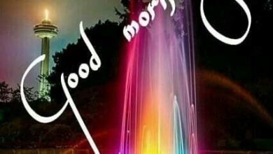 Happy morning river photos Greetings Images 390x220 - Happy morning river photos Greetings Images