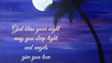 Have a good night love image 390x220 - Have a good night love image