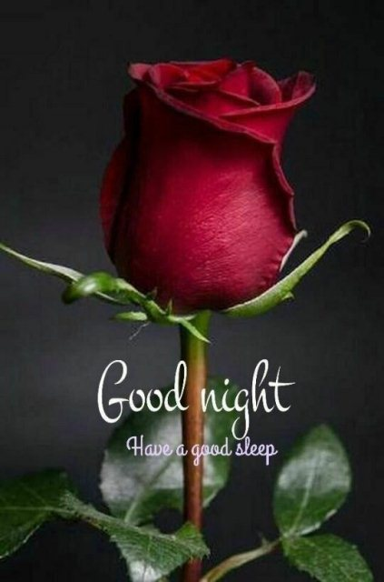 Is goodnight one word or two image - Is goodnight one word or two image