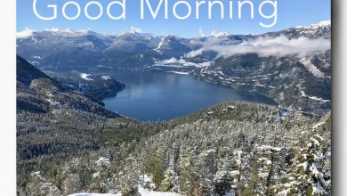 Morning greeting landscape photos Greetings Images 390x220 - Morning greeting landscape photos Greetings Images
