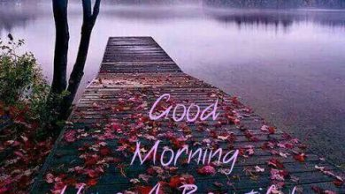 Morning greeting river image Greetings Images 390x220 - Morning greeting river image Greetings Images