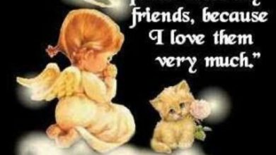 Wish you a good night quotes image 390x220 - Wish you a good night quotes image