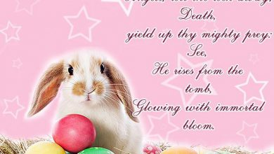 Easter Quotes And Sayings 390x220 - Easter Quotes And Sayings