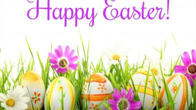 Easter Sunday Wishes 390x220 - Easter Sunday Wishes