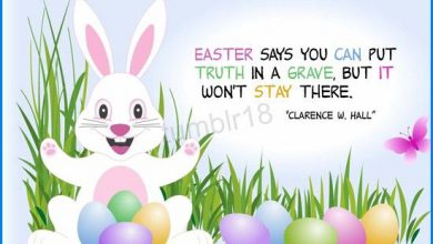 Funny Easter Greetings Quotes 390x220 - Funny Easter Greetings Quotes