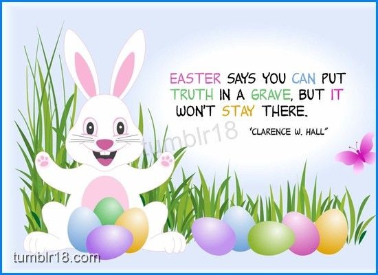 Funny Easter Greetings Quotes - Funny Easter Greetings Quotes