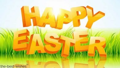 Funny Easter Messages For Friends 390x220 - Funny Easter Messages For Friends