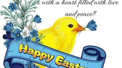 Funny Easter Quotes For Friends 390x220 - Funny Easter Quotes For Friends