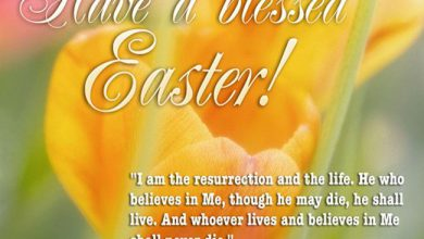 Funny Easter Wishes Messages 390x220 - Funny Easter Wishes Messages