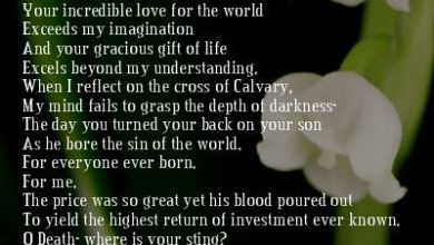 Happy Easter Blessings Quotes 390x220 - Happy Easter Blessings Quotes