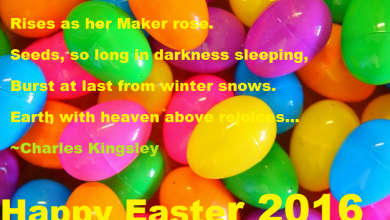 Happy Easter From 390x220 - Happy Easter From