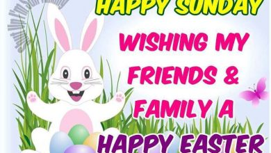 Happy Easter Greetings Sayings 390x220 - Happy Easter Greetings Sayings