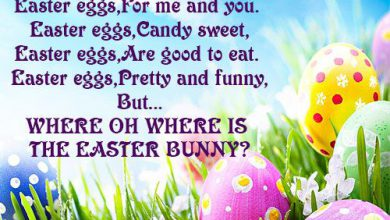 cool easter quotes 390x220 - cool easter quotes