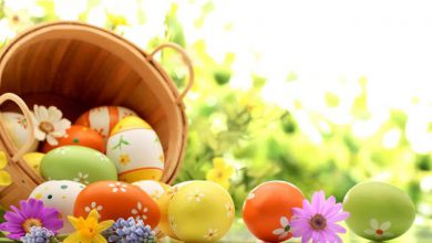 easter vector 390x220 - easter vector