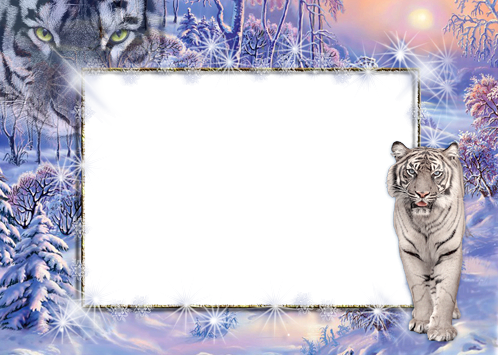 Winter snowdrifts photo frame - Winter snowdrifts photo frame