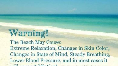 Beat The Summer Heat Quotes image 390x220 - Beat The Summer time Warmth Quotes picture