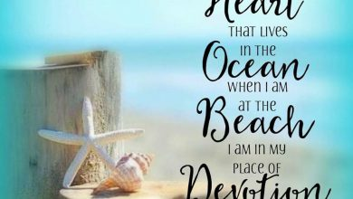 Enjoying The Last Days Of Summer Quotes image 390x220 - Having fun with The Final Days Of Summer season Quotes picture