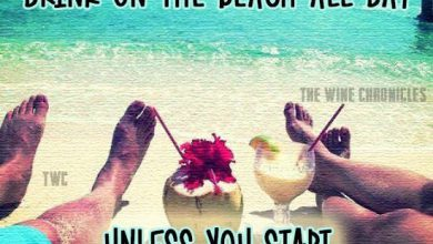 I Miss Summer Quotes image 390x220 - I Miss Summer time Quotes picture