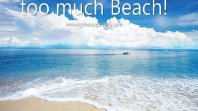 Lazy Days Of Summer Quotes image 390x220 - Lazy Days Of Summer season Quotes picture