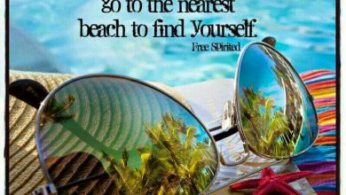 Summertime Quotes Funny image 390x220 - Summertime Quotes Humorous picture